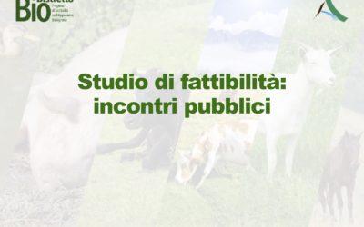 Presentazioni pubbliche del Progetto di fattibilità