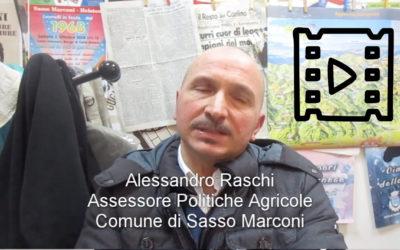 Alessandro Raschi, Assessore, Sasso Marconi