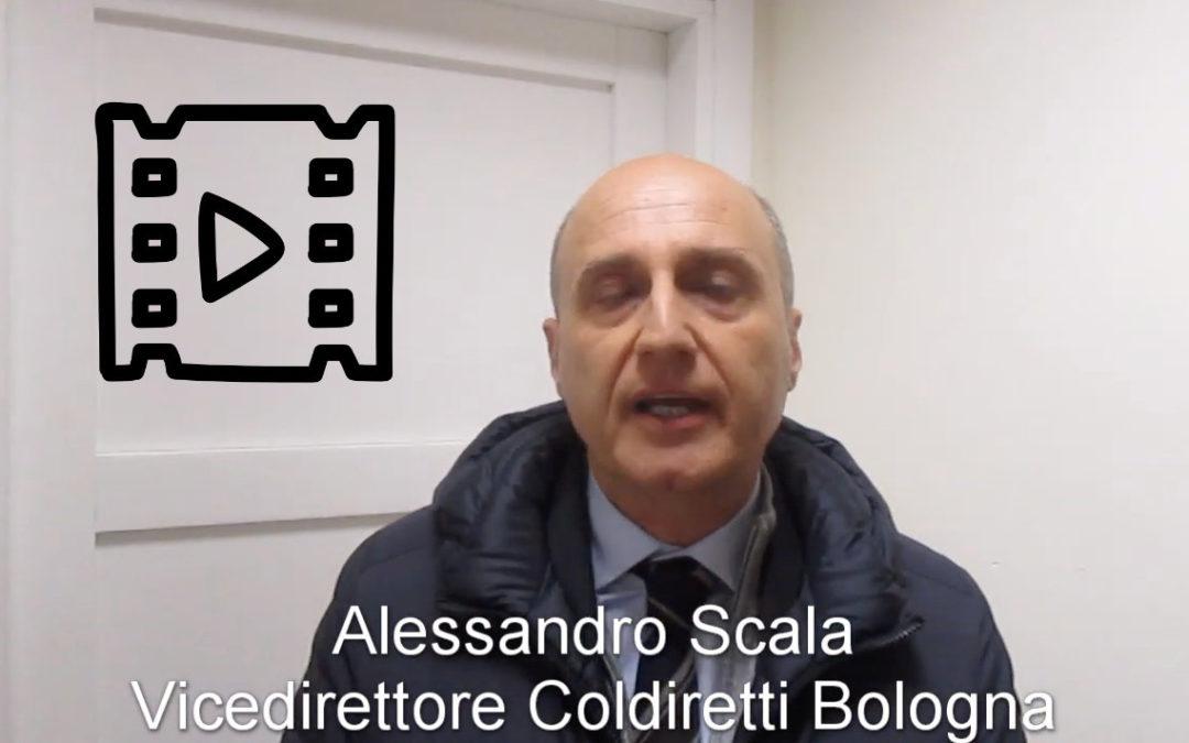 Alessandro Scala, Coldiretti