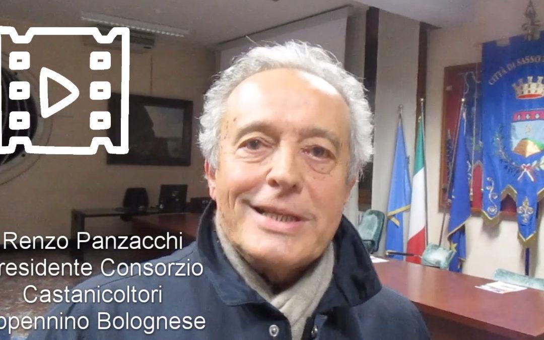 Renzo Panzacchi, Consorzio Castanicoltori