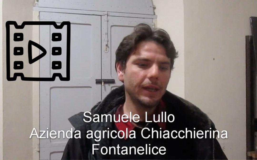 Samuele Lullo, Chiacchierina, Fontanelice